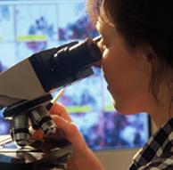 Análises Patológicas - Exame de Histopatologia